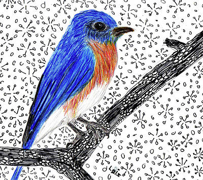 Bluebird Mixed Media - Bluebird by Lois Davis