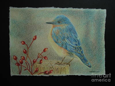 Drawing - Bluebird Of Happiness by Lisa Bliss Rush