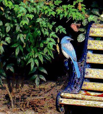 Rusty Trucks - Bluebird On A Bench by Michele Avanti