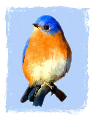 Painting - Bluebird On Blue by Jai Johnson