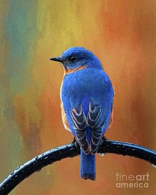 Digital Art - Bluebird by Suzanne Handel
