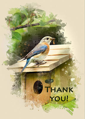 Bluebird Mixed Media - Bluebird Watercolor Thank You Card by Christina Rollo