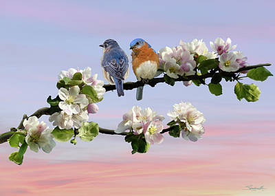Digital Art - Bluebirds In Apple Tree by IM Spadecaller