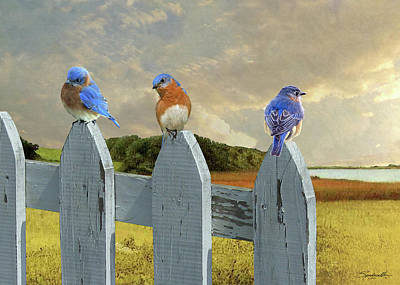 Digital Art - Bluebirds In My Heart by Spadecaller