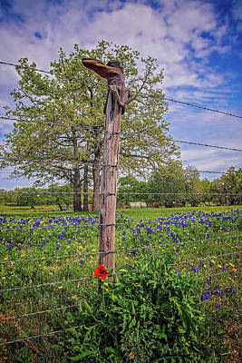 Photograph - Bluebonnets And Red Poppy Boot On The Willow City Loop by Lynn Bauer