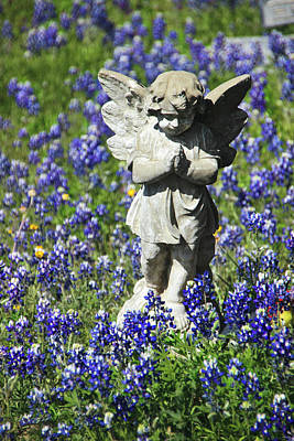 Photograph - Bluebonnet Angel by Robert Camp