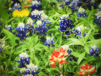 Photograph - Bluebonnet Bouquet by TK Goforth