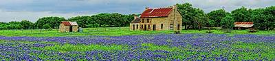 Photograph - Bluebonnet House Panorama by John Babis