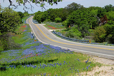 Photograph - Bluebonnet Road by Robert Camp