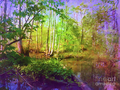 Photograph - Bluebonnet Swamp by Judi Bagwell