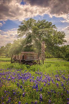 Photograph - Bluebonnet Welcome Wagon by Lynn Bauer