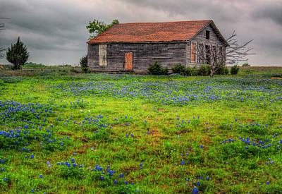 Photograph - Bluebonnets And Abandoned Farm House by David and Carol Kelly