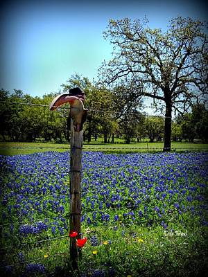 Photograph - Bluebonnets And Boots by Dale Paul