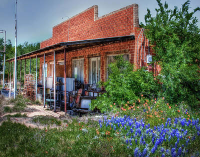 Photograph - Bluebonnets And Junk by David and Carol Kelly