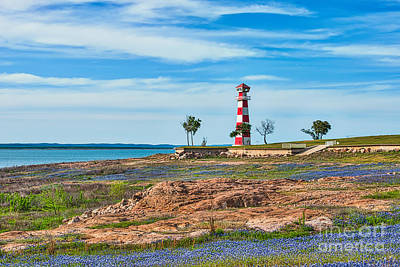 Wildflower Photograph - Bluebonnets And Lighthouse by Tod and Cynthia Grubbs
