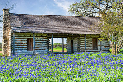 Log Cabins Photograph - Bluebonnets And Log Cabin by Tod and Cynthia Grubbs