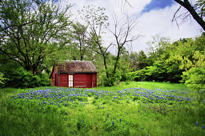 Photograph - Bluebonnets And Red House by David and Carol Kelly