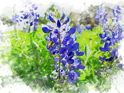 Photograph - Bluebonnets by Eddie Lee