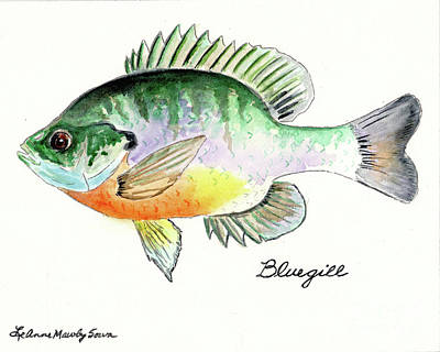 Painting - Bluegill Fish by LeAnne Sowa