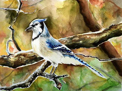 Bluejay Painting - Bluejay by Anna  Katherine
