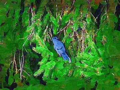Bluejay Painting - Bluejay by Deborah MacQuarrie-Selib