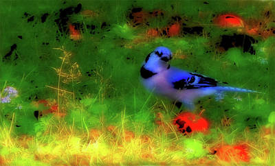 Bluejay Mixed Media - Bluejay-fall Approaching-a Rainbow Play Of Colors by Mike Breau