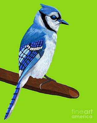Bluejay Digital Art - Bluejay On Branch by Jackie Besteman