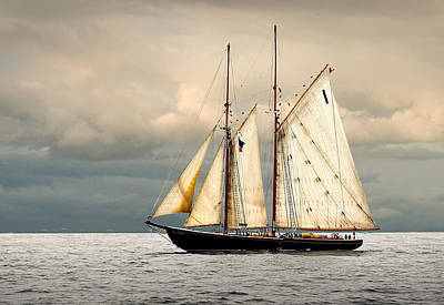 Windjammer Photograph - Bluenose by Fred LeBlanc