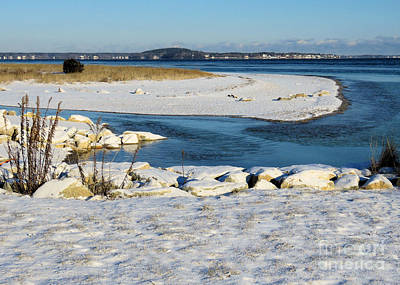Photograph - Colors Of A Winter Seascape by Janice Drew