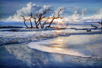 Photograph - Blues At Driftwood Beach by Debra and Dave Vanderlaan