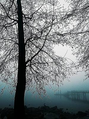 Photograph - Bluest Fog by Lauren Williamson