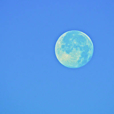 Photograph - Bluesy Moon by Eric Tressler