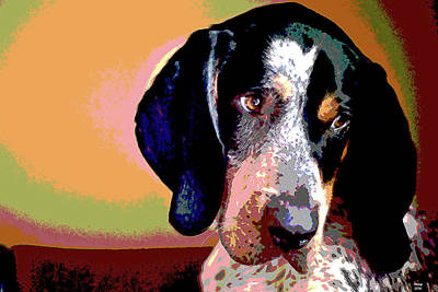 Raccoon Mixed Media - Bluetick Coonhound by Charles Shoup
