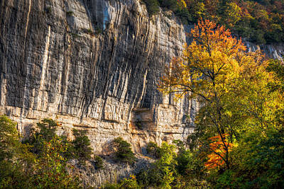 Photograph - Bluff And Tree by James Barber