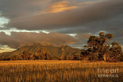 Photograph - Bluff Knoll 2 by Werner Padarin