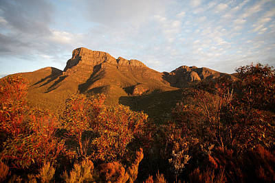 Photograph - Bluff Knoll Sunset Wa by Tony Brown