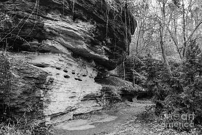 Photograph - Bluff Lined Walk Grayscale by Jennifer White