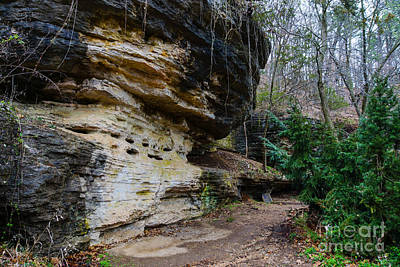Photograph - Bluff Lined Walk by Jennifer White