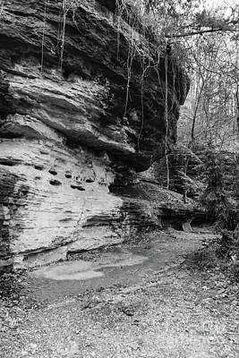 Photograph - Bluff Lined Walkway Grayscale by Jennifer White