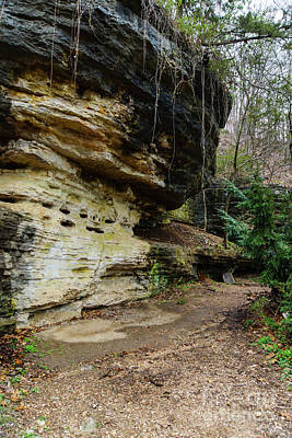Photograph - Bluff Lined Walkway by Jennifer White