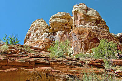 Photograph - Bluffs Along Calf Creek Lower Falls Trail In Grand Staircase-escalante National Monument, Utah by Ruth Hager