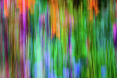 Photograph - Blurred #1 by Michael Niessen