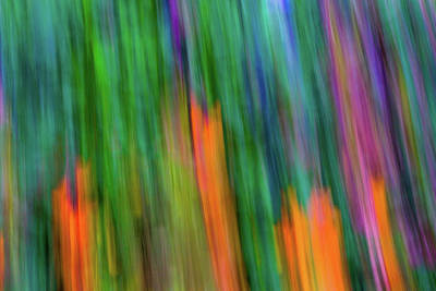 Photograph - Blurred #2 by Michael Niessen