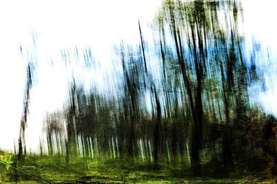 Photograph - Blurred Vision by Randi Grace Nilsberg