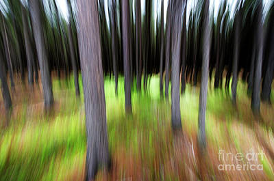 Photograph - Blurring Time by Bob Christopher