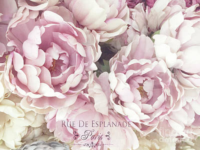 Photograph - Blush Pink Peony Flowers - Pink Blush French Peony Romantic Floral Watercolor French Script by Kathy Fornal