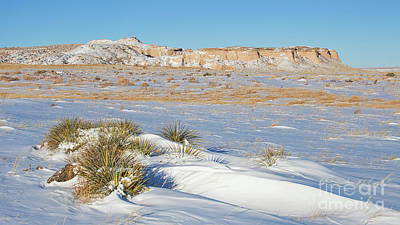 Photograph - Blustery Buttes by Jim Garrison