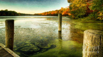 Photograph - Blydenberg Park In The Fall by Alissa Beth Photography