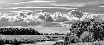 Photograph - Bnw Day E#2 by Leif Sohlman