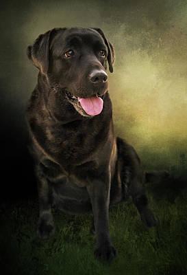 Labrador Retriever Digital Art - Bo, The English Lab by Anita Hubbard